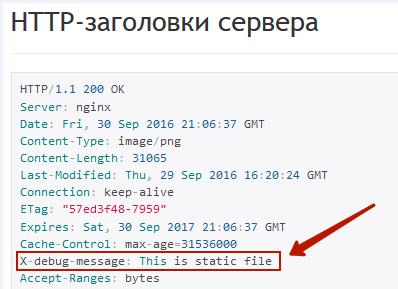 Отладочная информация NGINX в заголовках HTTP headers